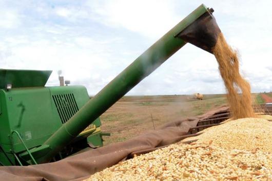 grãos-Arquivo Agência Brasil