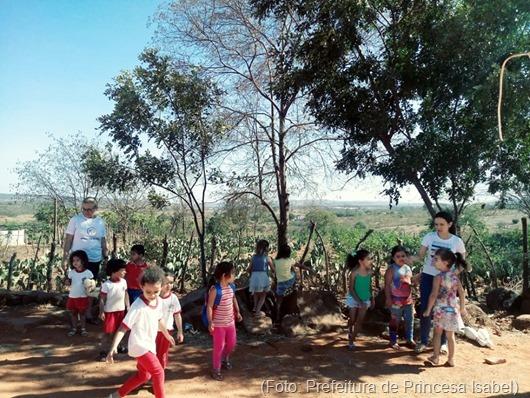 Creches municipais trabalham ações alusivas ao Dia da Árvore em Princesa Isabel