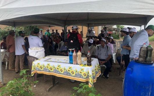 Pesquisas com algodão e bovinos impressionam missão de Moçambique e Colômbia