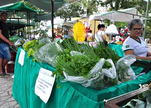 Mostra Regional da Agricultura Familiar e 3ª Feira Estadual do Mel