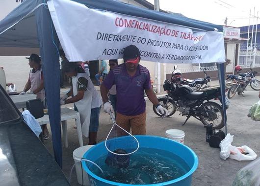 Agricultores recebem apoio do Governo e comercializam peixe vivo em Mãe d'Água