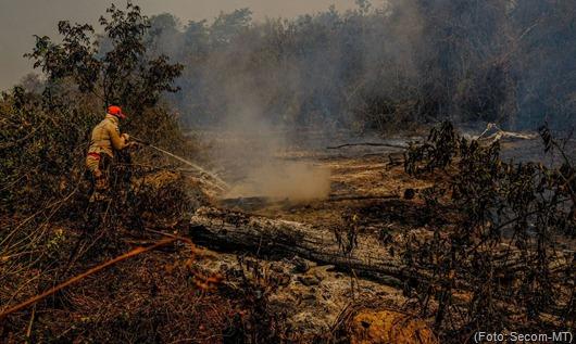 incêndio_MT