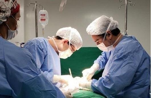 transplantes_Paraíba