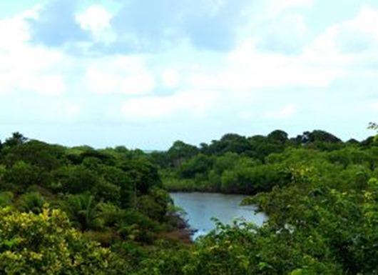 Rio Aratu