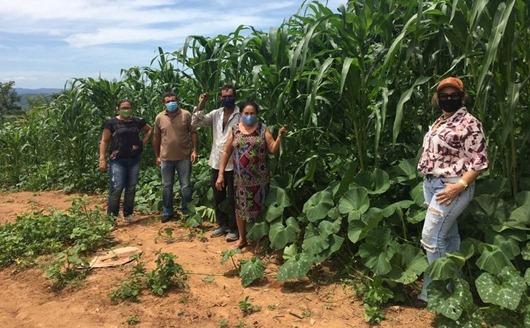 produtores rurais_assistência on-line _ Empaer