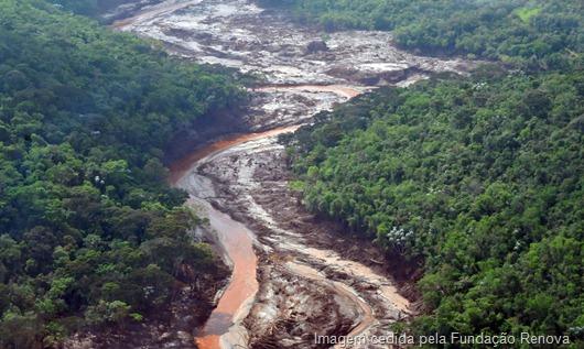 reflorestamento_de_areas_atingidas_em_mariana281120151202